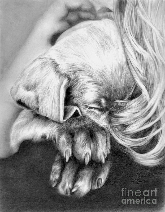 Behind Closed Paws Drawing