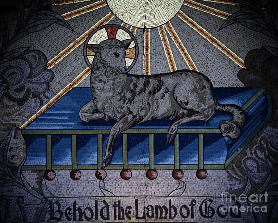 Behold The Lamb Of God Stained Glass Church Window  Photograph