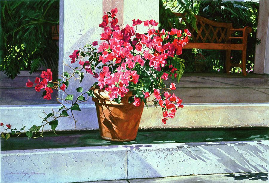 Bel-air Bougainvillea Pot Painting