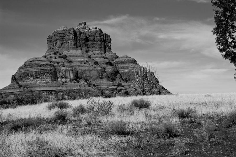 Bell Rock In Monochrome Photograph