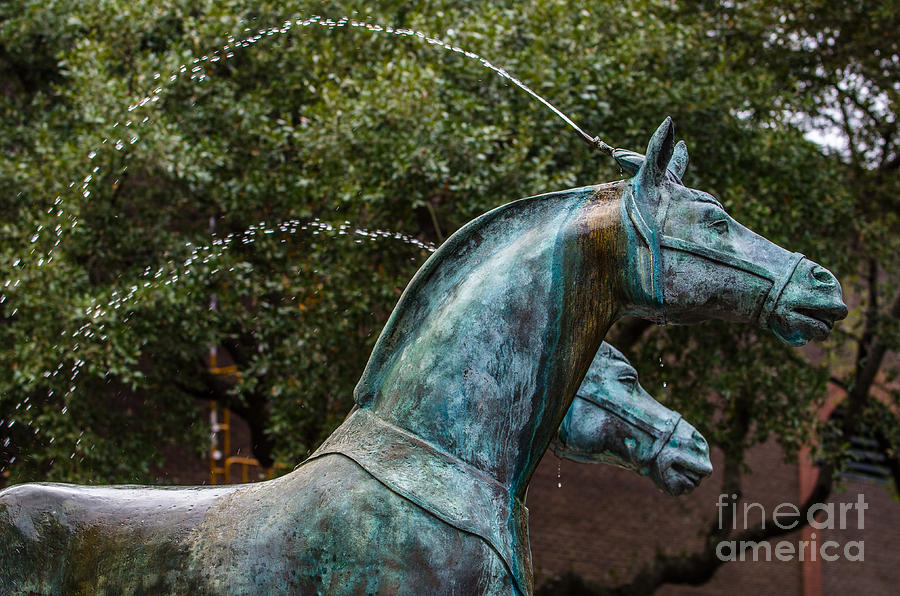 Belmond Charleston Place Horse Fountain Photograph