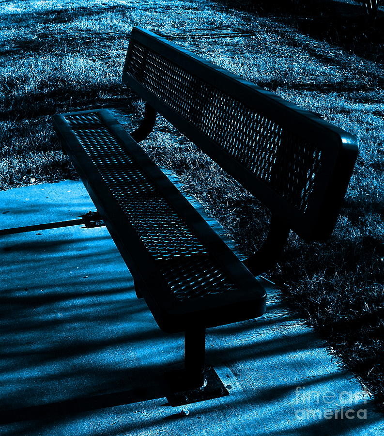 Bench In The Park Photograph  - Bench In The Park Fine Art Print