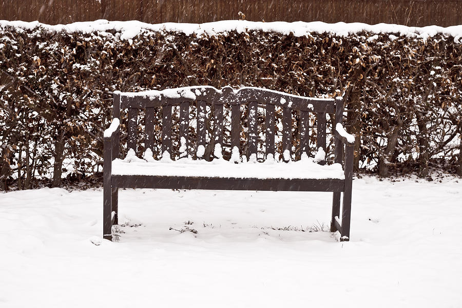 Bench In The Snow Photograph