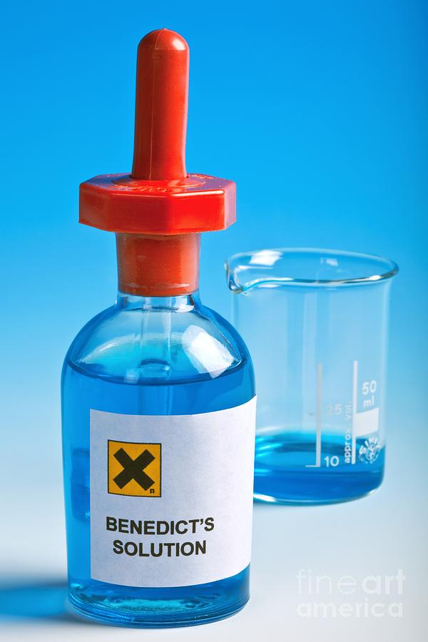 Benedict's Solution Photograph - Benedicts Solution by Martyn F. Chillmaid