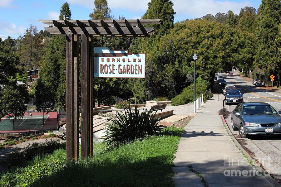Berkeley Rose Garden 5d22426 Photograph