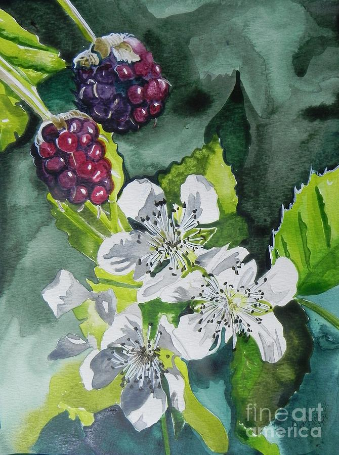Berries And Blossoms Painting  - Berries And Blossoms Fine Art Print