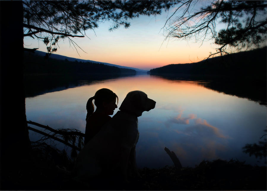 Best Friends Photograph  - Best Friends Fine Art Print