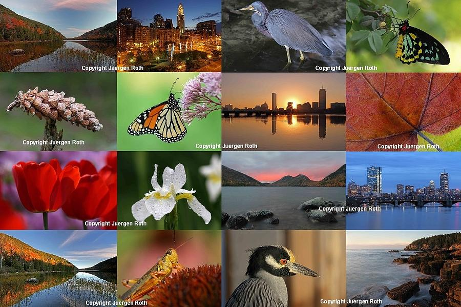 Best Photography Of The Year 2012 Photograph