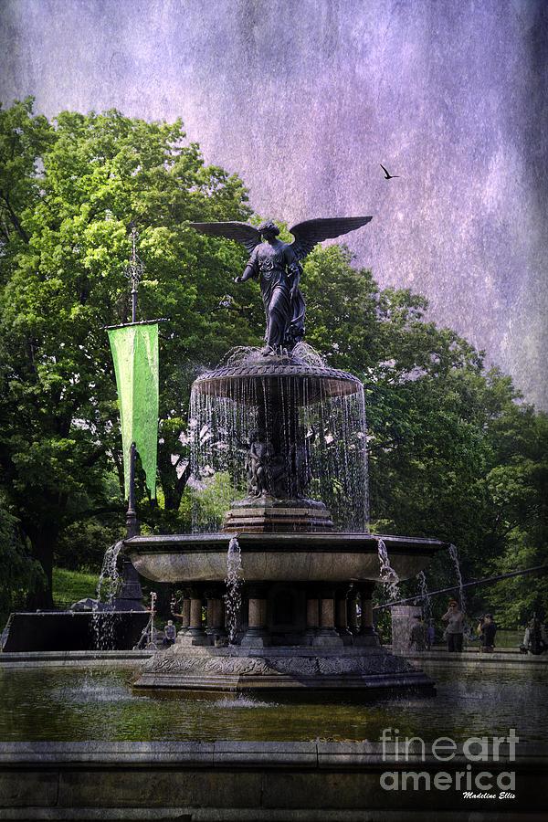 Bethesda Fountain Photograph