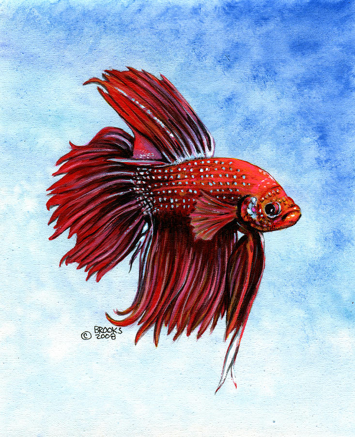 Betta big red painting by richard brooks for Betta fish painting