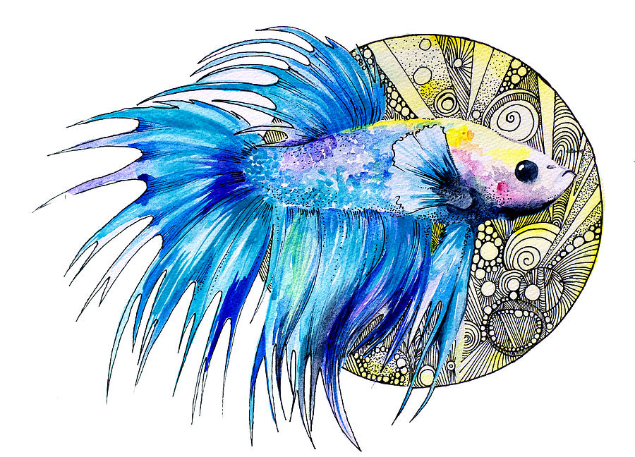 Betta Painting  - Betta Fine Art Print