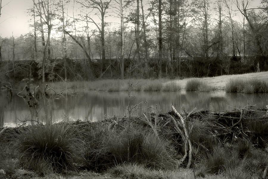 Landscape Photograph - Between Now And Then by Nina Fosdick