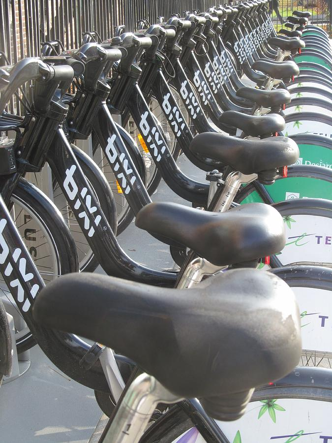 Bicycle Seats Photograph