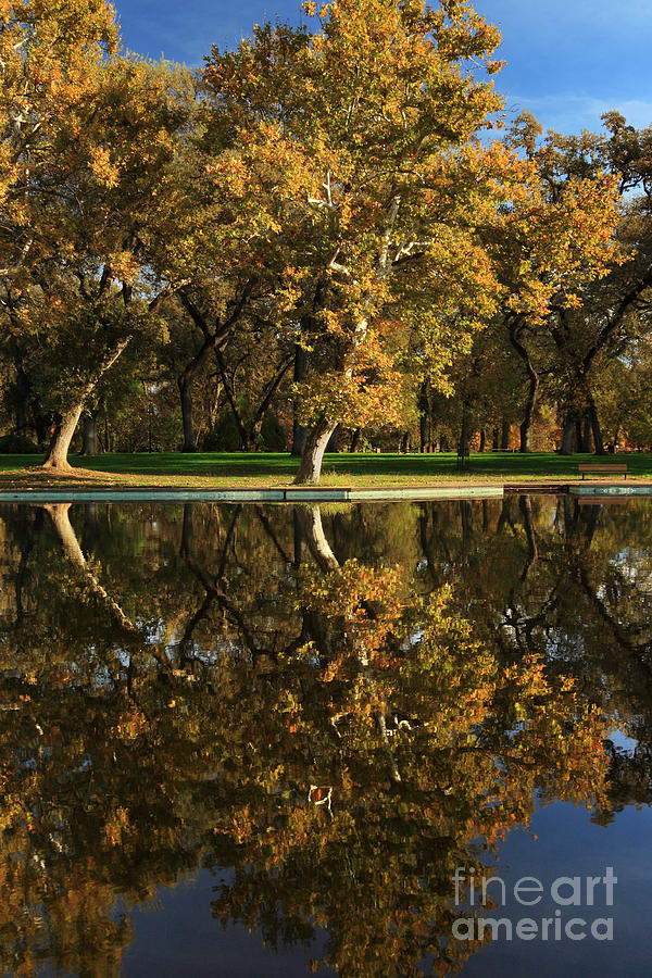 Bidwell Park Reflections Photograph