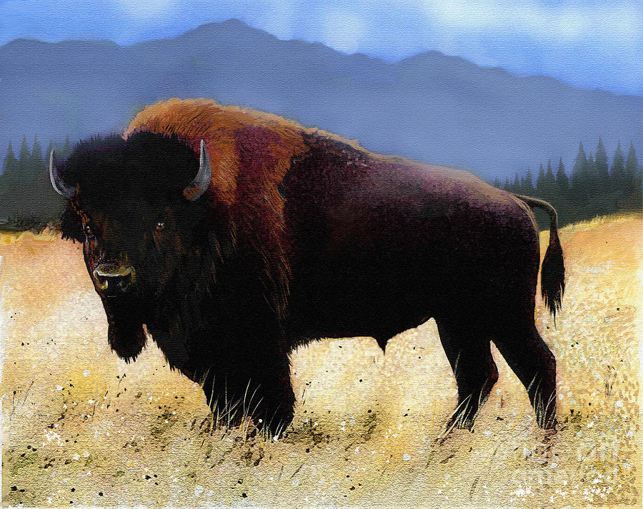 Big Bison Painting  - Big Bison Fine Art Print