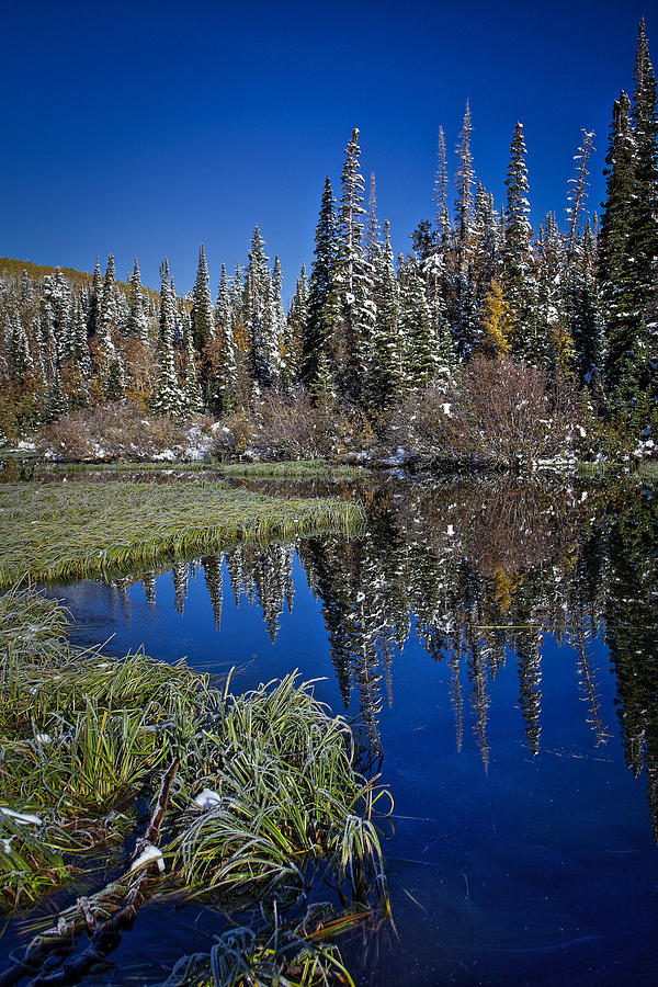 Reflecting Water Photograph - Big Cottonwood Canyon  by Richard Cheski