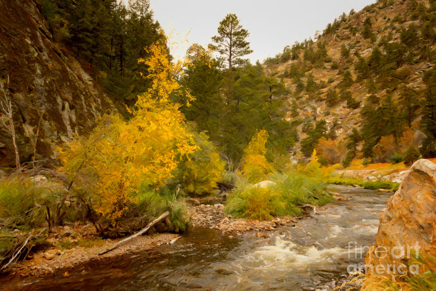 Big Thompson River 10 Photograph  - Big Thompson River 10 Fine Art Print