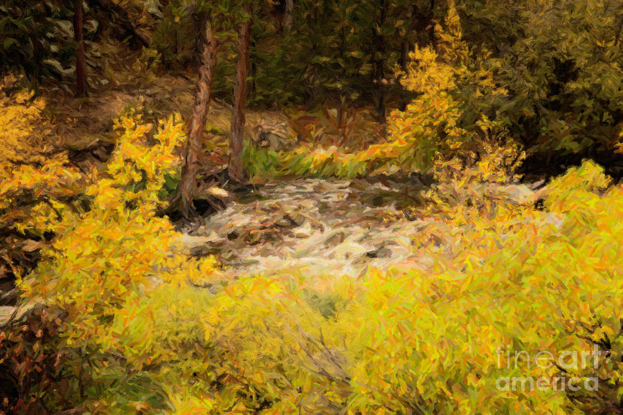 Big Thompson River 6 Photograph  - Big Thompson River 6 Fine Art Print