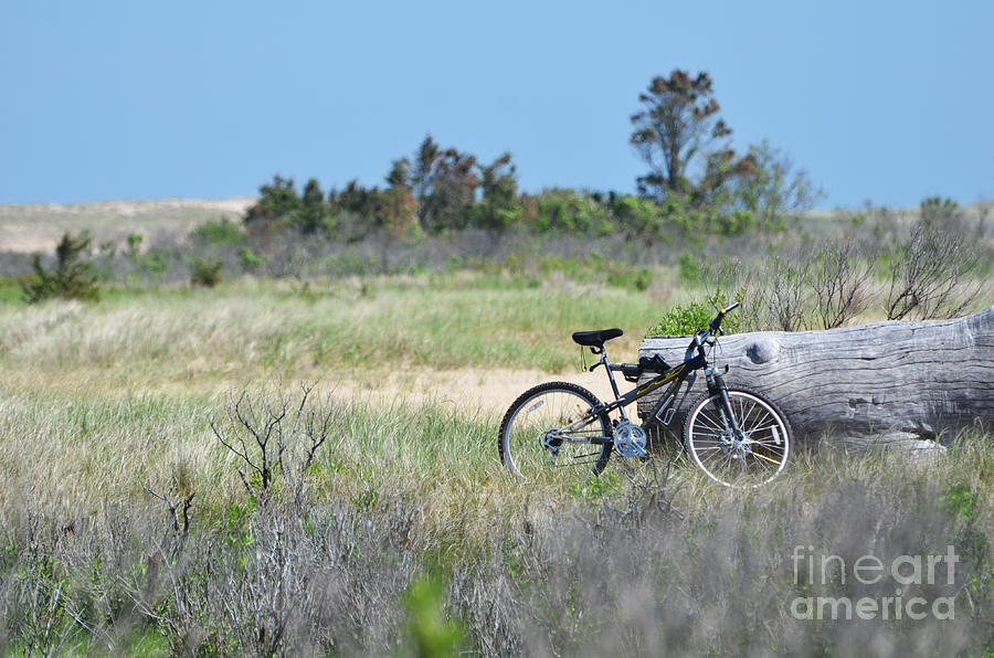 Bike In The Dunes - East Hampton Photograph