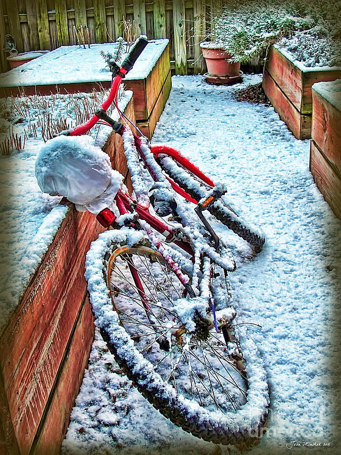 Bike In Winter Photograph  - Bike In Winter Fine Art Print