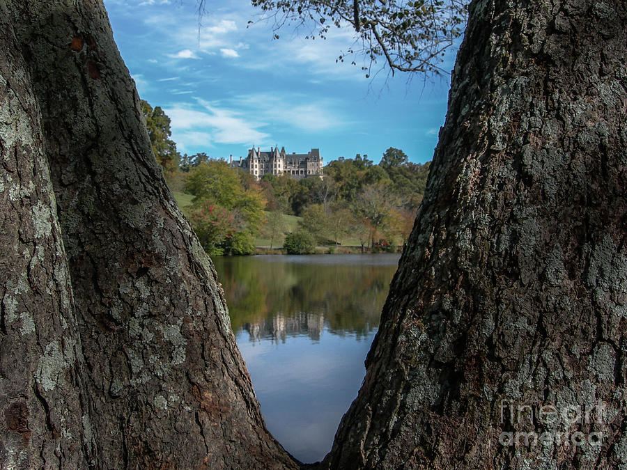 Biltmore Through The Trees Photograph