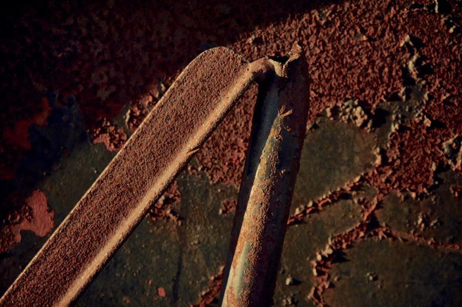 Rust Photograph - Bipod by Odd Jeppesen