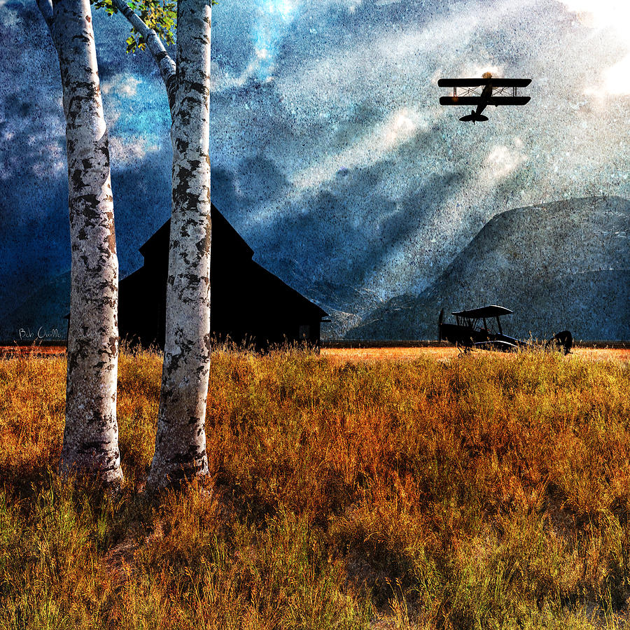 Birch Trees And Biplanes  Painting  - Birch Trees And Biplanes  Fine Art Print