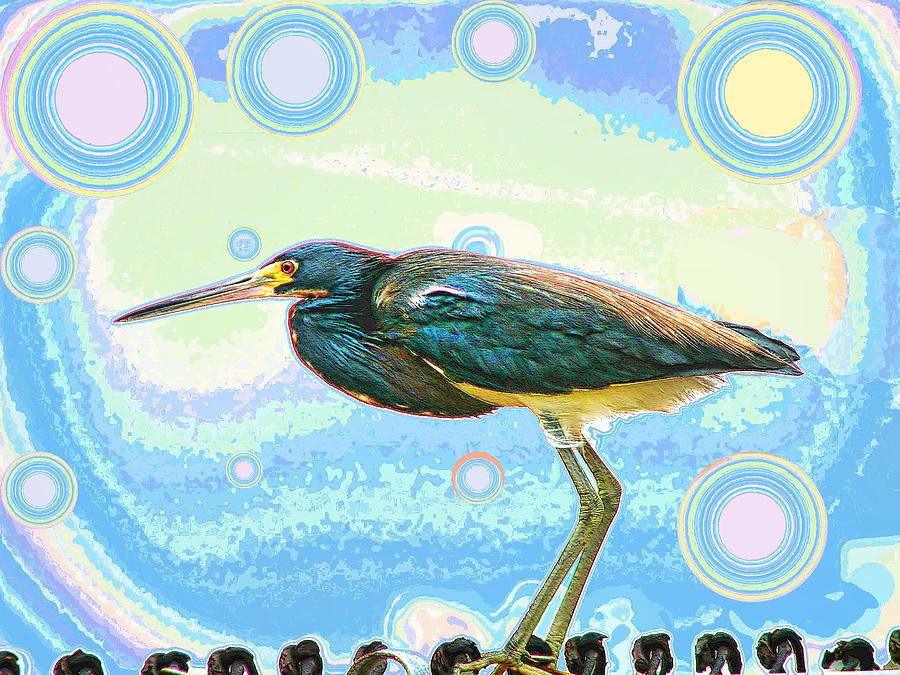 Bird Contemplates The Cosmos Photograph