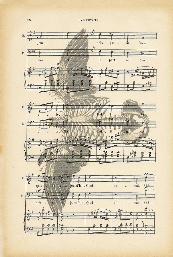 Bone Digital Art - Bird Music by Georgia Fowler