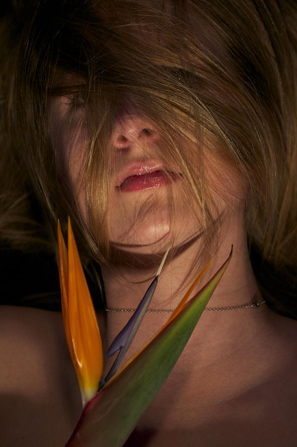 Bird Of Paradise And Model Photograph by Gloria De los Santos