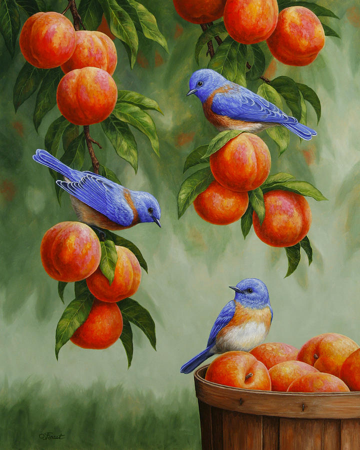 Birds Painting - Bird Painting - Bluebirds And Peaches by Crista Forest