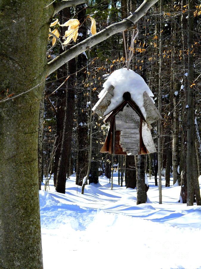 Birdhouse In Winter Photograph