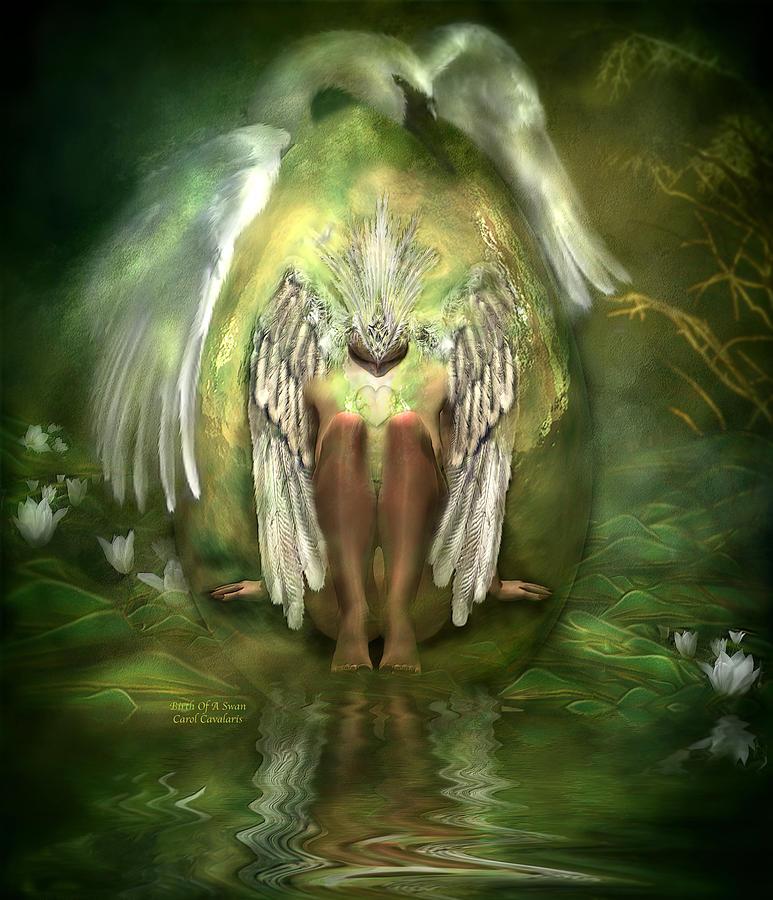 Birth Of A Swan Mixed Media