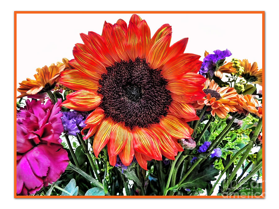 Birthday Bouquet Photograph  - Birthday Bouquet Fine Art Print