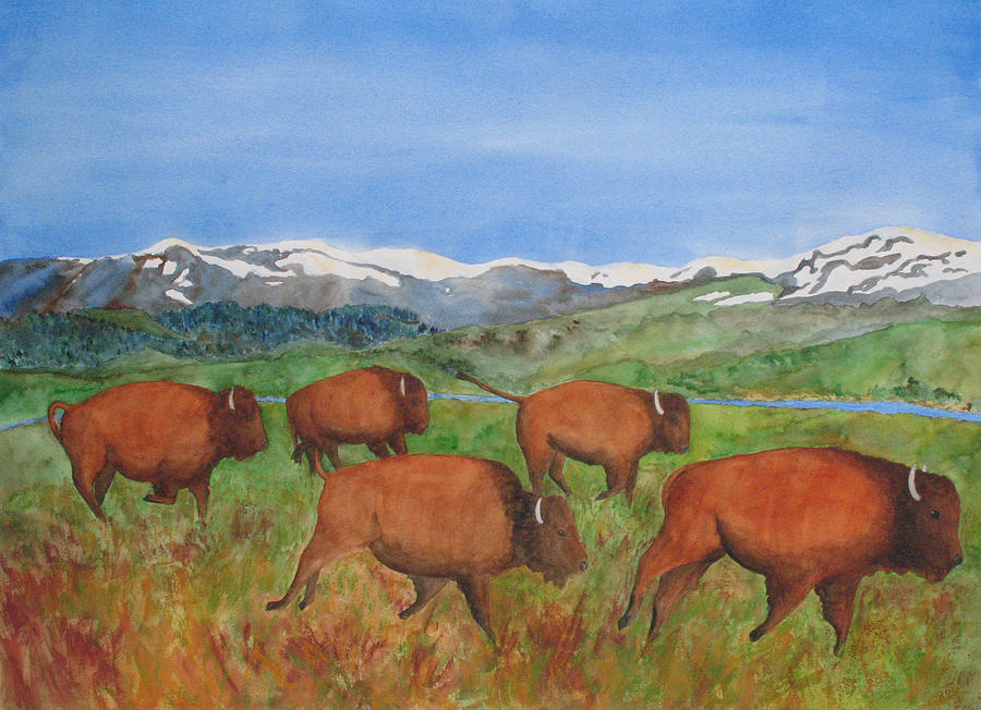 Bison At Yellowstone Painting