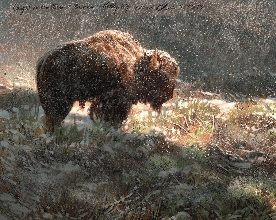 Bison In The Snow Digital Art