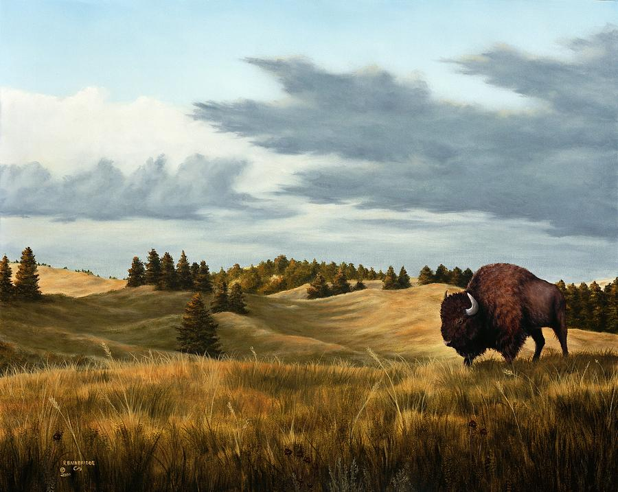 South Dakota Artists Paintings