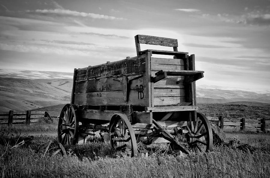 Black And White Covered Wagon Photograph
