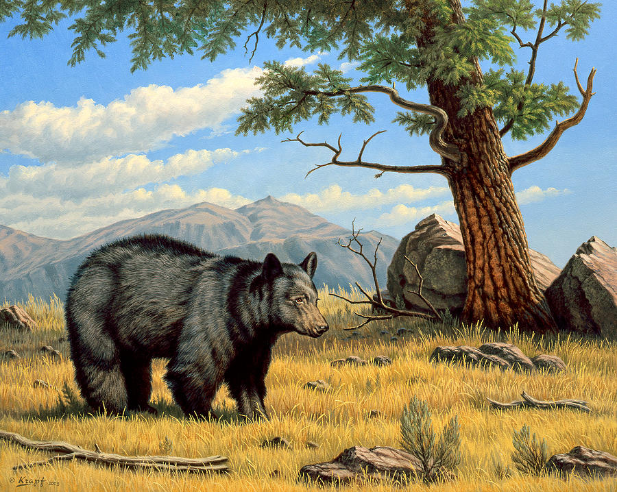 Wildlife Painting - Black Bear Above Lamar by Paul Krapf