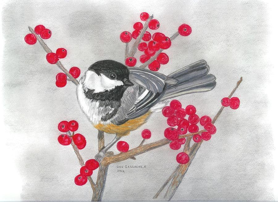 Black Capped Chickadee DrawingBlack Capped Chickadee Drawing