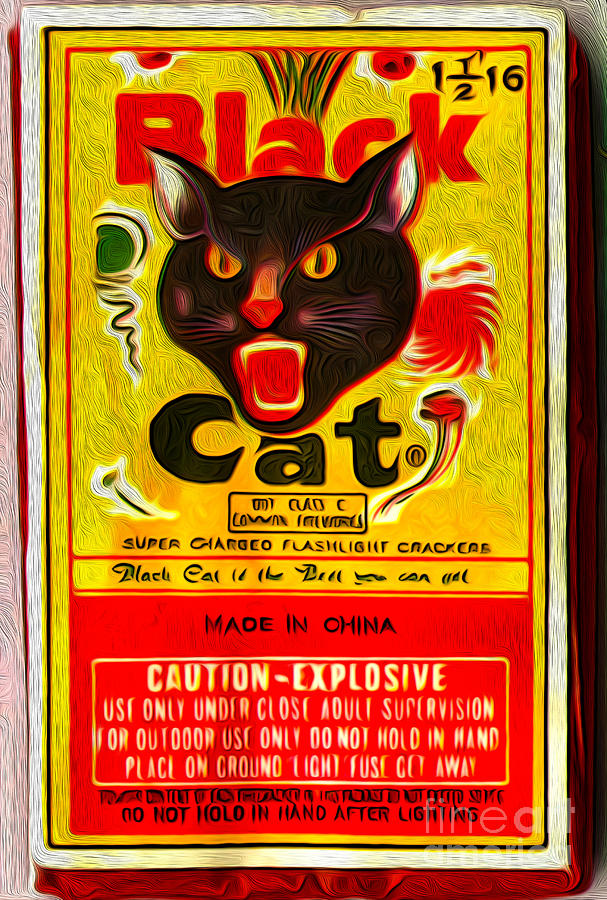 Black Cat Fireworks Painting  - Black Cat Fireworks Fine Art Print