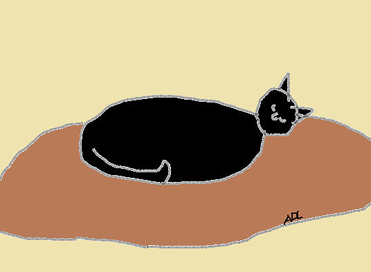 Black Cat On A Rug Drawing