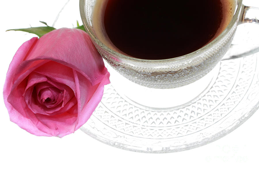 Black Coffee Pink Rose Photograph