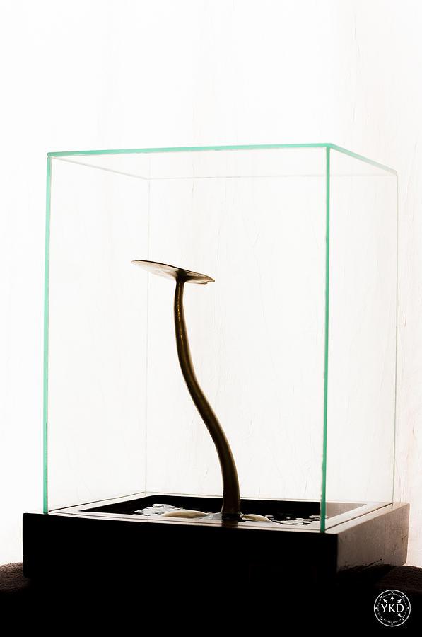 Black Gold Lily Sculpture