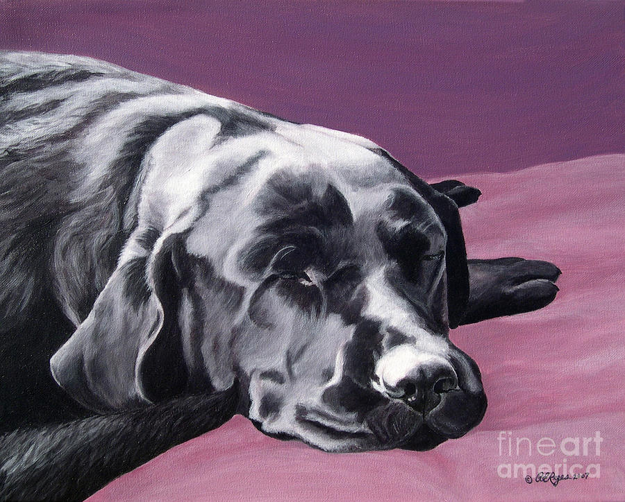 Black Labrador Beauty Sleep Painting  - Black Labrador Beauty Sleep Fine Art Print