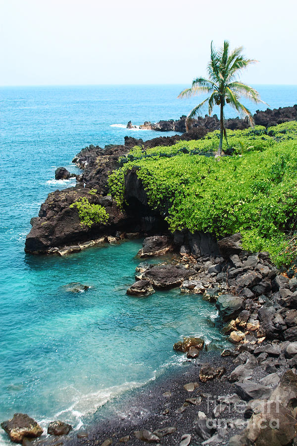 Black Sand Beach Photograph