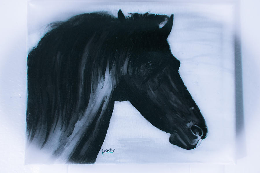 Black Stallion Painting