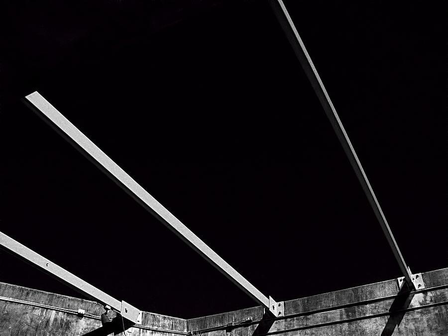 Black And White Photograph - Black Velvet by Wendy J St Christopher