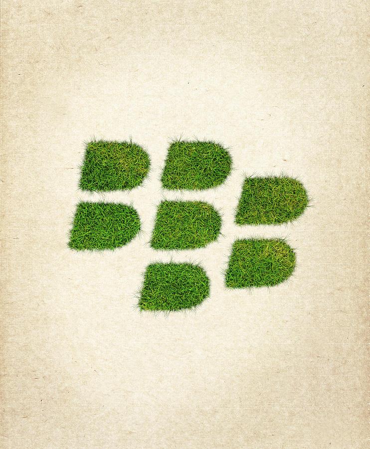 Blackberry Grass Logo Drawing