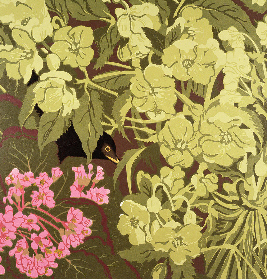Blackbird In The Hellebores Painting  - Blackbird In The Hellebores Fine Art Print